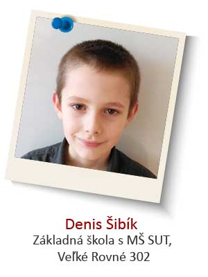 Denis-Sibik
