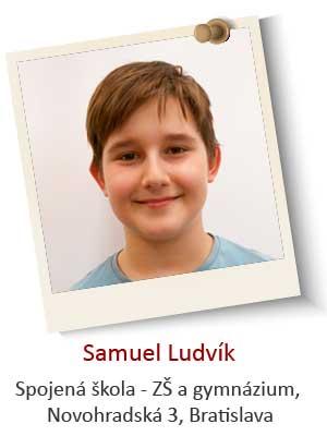 Samuel-Ludvik