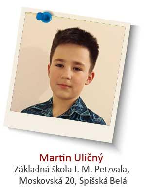 Martin-Ulicny
