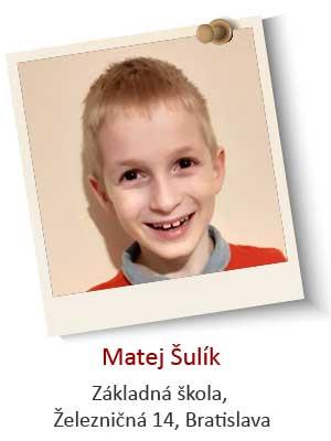 Matej-Sulik