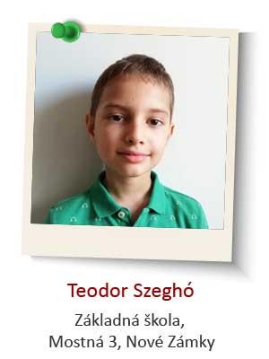 Teodor-Szegho